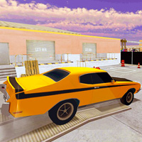 Backyard Car Parking