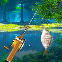Pesca en el lago del bosque