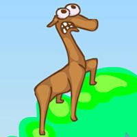 gravity llama