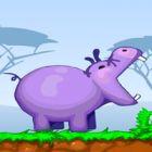 hippos feeder