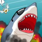 sydney shark