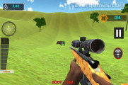Animal Safari Hunting: Gameplay
