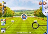 Archery World Cup: Target