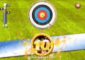 Archery World Cup: World Record
