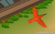 Vogel Simulator: Bird
