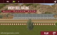 Bull Racing: Menu