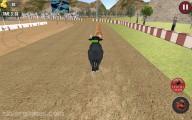 Bull Racing: Animal Race