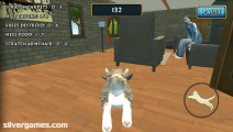 Cat Simulator: Exploring