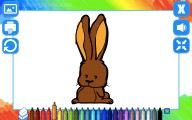 Libro De Colorear: Animales: Coloring Picture