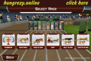 Crazy Dog Racing: Running Dogs Selection