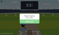 Cricket FRVR: Game Over Cricket Field