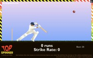 Cricket: Gameplay