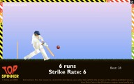Cricket: Screenshot
