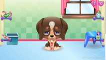Cute Puppy Care: Dog Measuring Fever