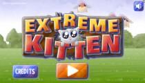 Extreme Kitten: Menu
