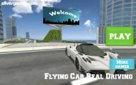 Flying Car Simulator: Menu