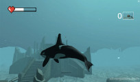 Killer Whale Simulator: Gameplay Shark