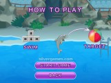 My Dolphin Show 3: How To Play
