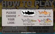 Prehistoric Shark: Shark Evolution