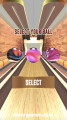 Pro Bowling 3D: Ball Selection