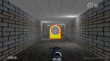 Shooter Job: Shooting Gun