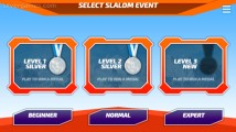 Ski Slalom: Beginner Normal Expert Slalom
