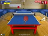 Table Tennis: Indoor