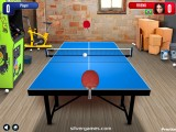 Table Tennis: Playing