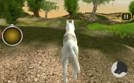 Wild Wolves Simulator: Gameplay Wolve Hunting