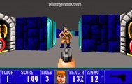 Wolfenstein 3D: Shooter