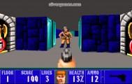 Wolfenstein 3d: Shooter